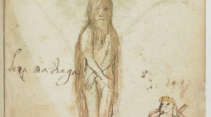 La Mandragore et autres remèdes : une traduction en hébreu du liber de plantis
