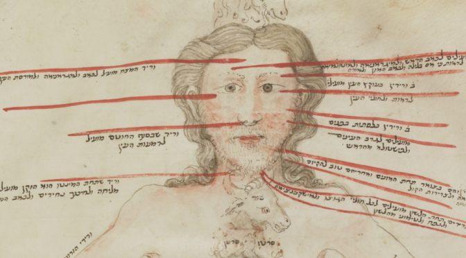 Le corps dans les étoiles : l'homme zodiacal et la médecine juive médiévale